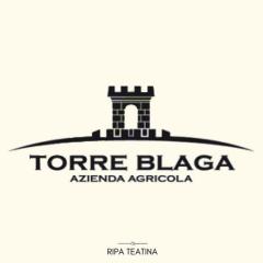 Agriturismo Torre Di Blaga logo